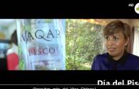 Día del Pisco – Claudia Olmedo