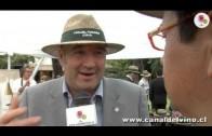 Lanzamiento Días de Verano – Fernando Almeda