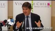 Preguntas y Respuestas conferencia de prensa Vinos de Chile Salvaguarda