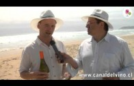 Sauvignon Blanc by the Sea, Cosechas 2012 – Cedirc Nicolle