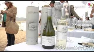 Sauvignon Blanc By the Sea 2015