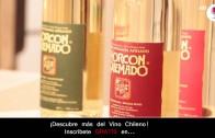Uvas para Pisco – Claudia Olmedo