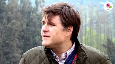 Biografia Mario Pablo Silva, Viña Casa Silva