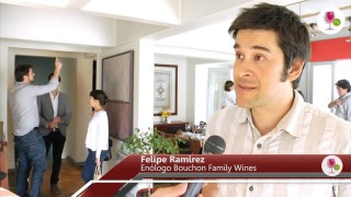 Cata vertical  de Mingre, Vino Icono de  Viña Bouchon Family Wines