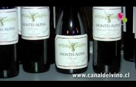Privado: Gala del Vino Cachagua 2012 – Viña Montes