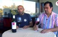 Vigno 2009, Carignan, García Schwaderer