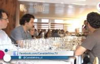 Conociendo Vinos Italianos